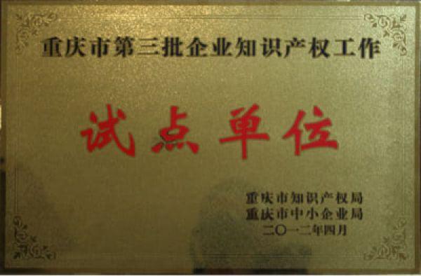重庆市第三批企业知识产权工作试点单位