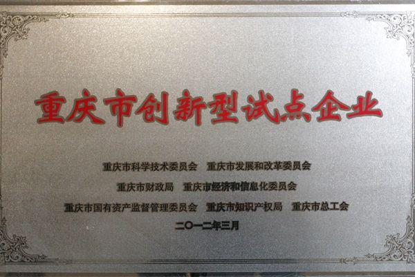 重庆市创新型试点企业
